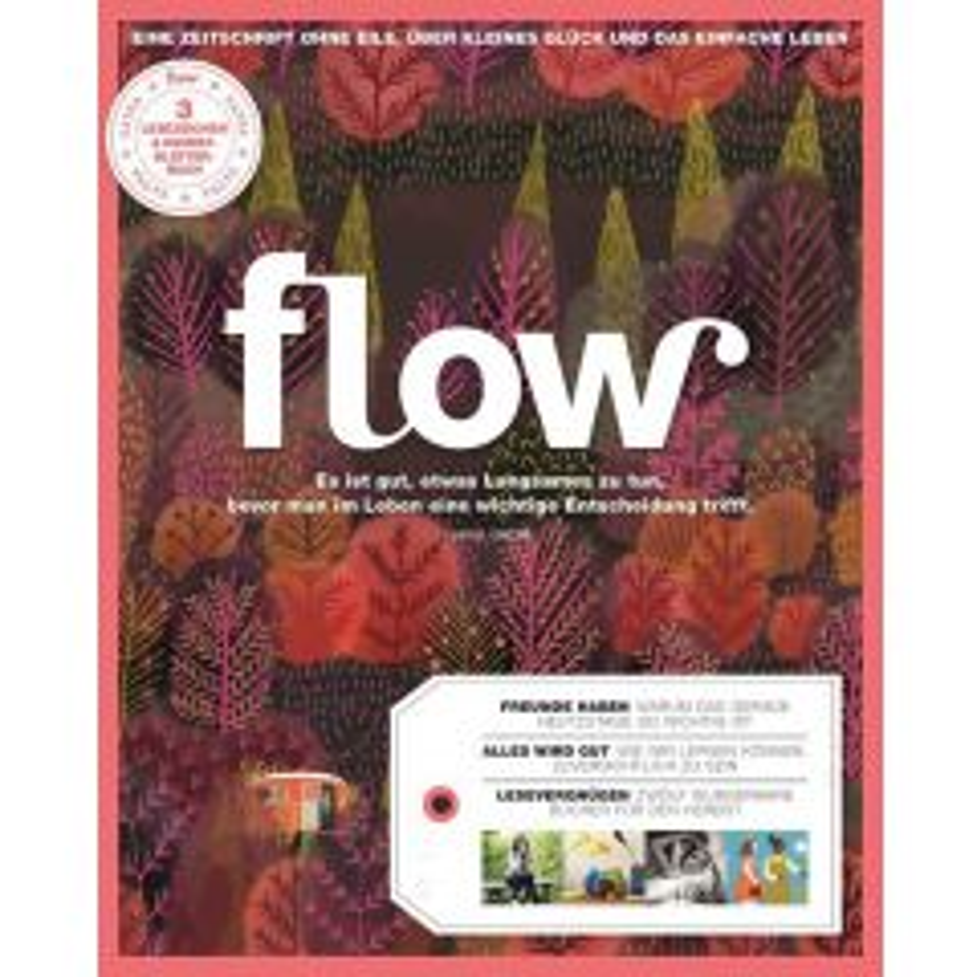 Flow Heft 29